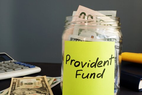 overview-of-the-public-provident-fund