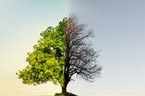 getting-poorer-in-retirement