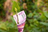 the-rise-of-esg-investing